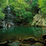 Parque Natural - Natural Park